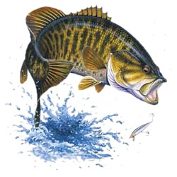 Bass T-Shirt - Small Mouth