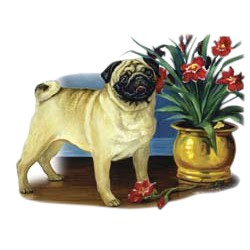 Pug T-Shirt - Linda Picken