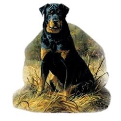 Rottweiler T-Shirt - Linda Picken