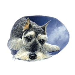 Schnauzer T-Shirt - Linda Picken