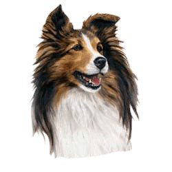 Shetland Sheepdog T-Shirt - Linda Picken