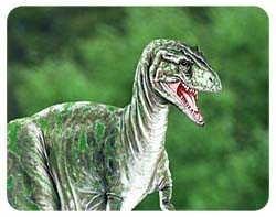 Dinosaur Coasters