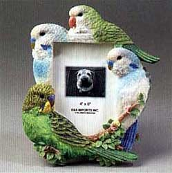Parakeet Picture Frame