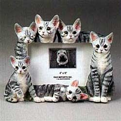 Tabby Cat Picture Frame