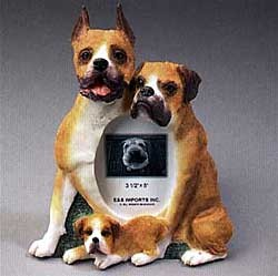 Boxer Picture Frame