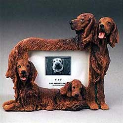 Irish Setter Picture Frame