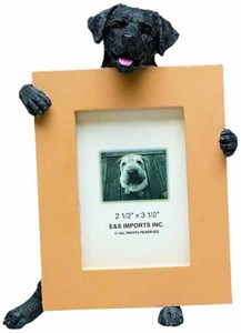 Black Lab Picture Frame