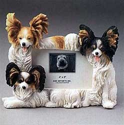 Papillon Picture Frame
