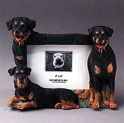 Rottweiler Picture Frame