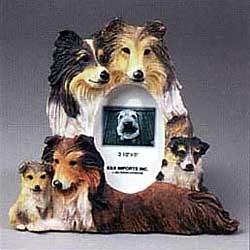 Shetland Sheepdog Picture Frame