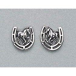 Horse Earrings & Horse Shoe