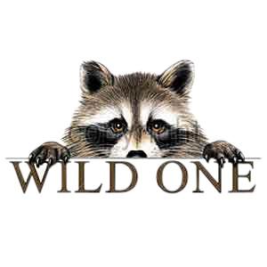 Raccoon T-Shirt - Wild One