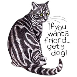 Cat T-Shirt - If You Want a Friend