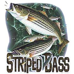 Bass T-Shirt - Striped Bass
