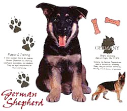 German Shepherd T-Shirt - Jersey