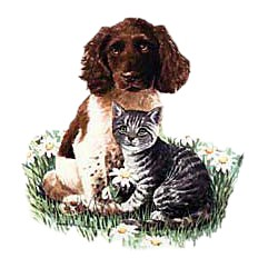 Springer Spaniel T-Shirt - Best Friends