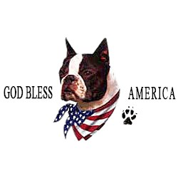 Boston Terrier T-Shirt - American Dog