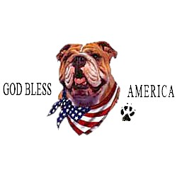 Bulldog T-Shirt - American Dog