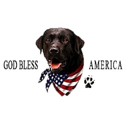 Black Lab T-Shirt - American Dog