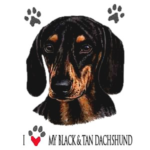 Dachshund T-Shirt - Collage