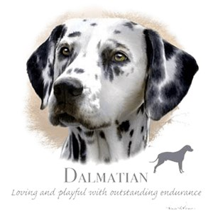 Dalmatian T-Shirt - Howard Robinson