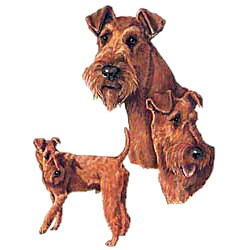 Irish Terrier T-Shirt - Collage