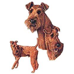 Irish Terrier T-Shirt - Collage
