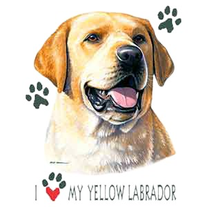 Yellow Lab T-Shirt - Collage