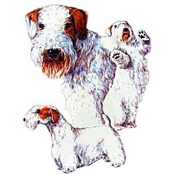 Sealyham Terrier T-Shirt - Collage