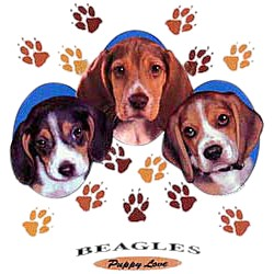 Beagle T-Shirt - Puppies and Paws