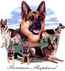 German Shepherd T-Shirt - Lawn Dogs