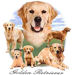 Golden Retriever T-Shirt - Lawn Dogs