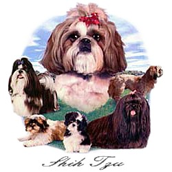 Shih Tzu T-Shirt - Lawn Dogs
