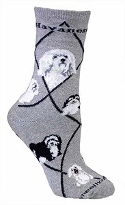 Havanese Socks