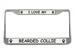 Bearded Collie License Plate Frame