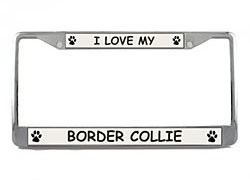 Border Collie License Plate Frame