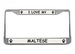 Maltese License Plate Frame