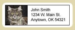 Gray Cat Address Labels