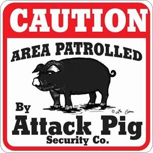 Attack Pig Sign