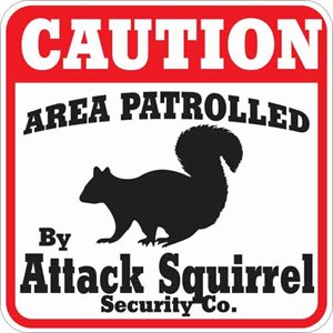Attack Squirrel Sign