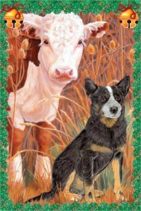 Australian Cattle Dog Christmas Cards
