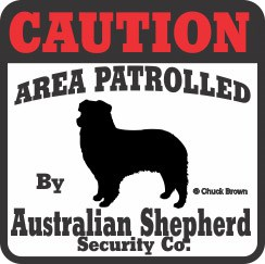 Australian Shepherd Bumper Sticker Caution