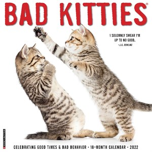 Bad Kitties Calendar 2014