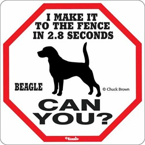 Beagle 2.8 Seconds Sign