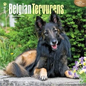 Belgian Tervuren Calendar 2015