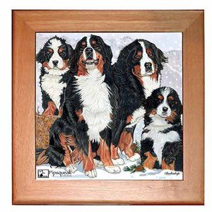 Bernese Mountain Dog Trivet