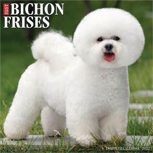 Bichons Calendar 2015