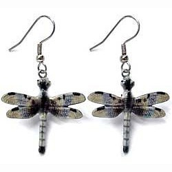 Blue Dragonfly Earrings True to Life