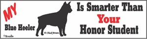 Blue Heeler Bumper Sticker Honor Student