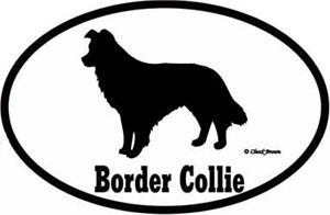 Border Collie Bumper Sticker Euro